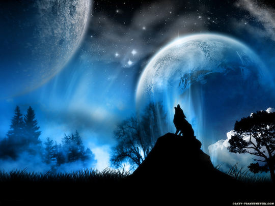 Lone Wolf Poems The Lone Wolf a Poem by Lone