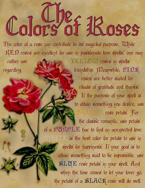 poem contest pick a rose all poetry