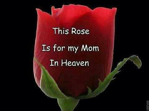 This Rose Is For My Mom In Heaven (Dedicated To My Mother ...