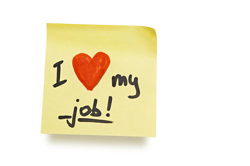 I Love My Job - a poem by Stephen Hollins