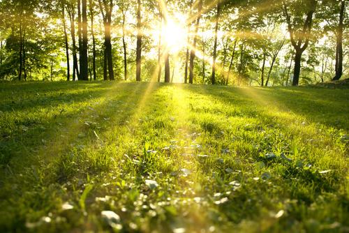 How to write a Spiritual Poem, Spiritual Poems : Story Write