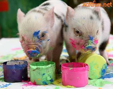 painting pretty pigs a poem by myra lochner all poetry