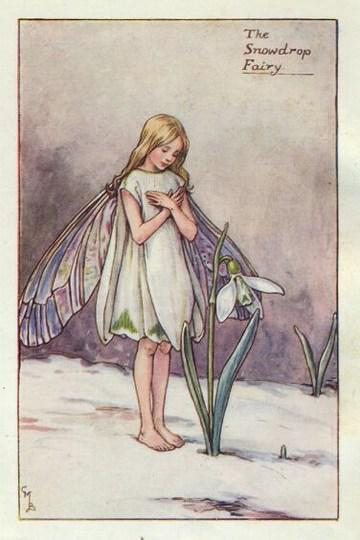 The Lonely Snowdrop A Poem By Lulu Gee All Poetry