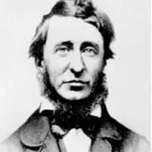 a biography of henry david thoreau Thoreau is best known as a transcendentalist who spent a lot of time at walden pond learn more about henry david thoreau in this guide to great people.
